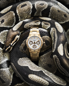 josh_caudwell_advertising_photographer_london_commercial_still_life_snake_coiled_fashion_casio_watch